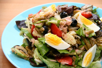 french salade nicoise e1374094367942 Dont Starve Yourself   Part 1